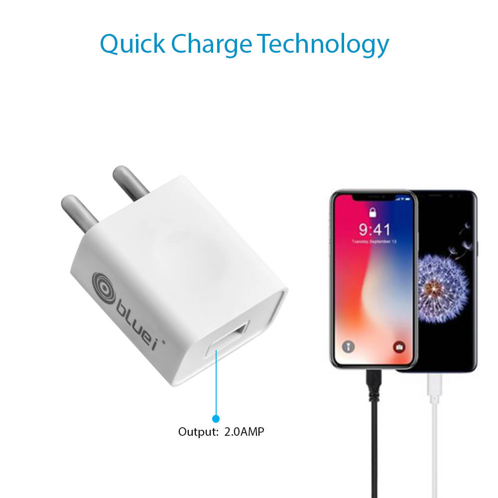 BI-DI-HC-310 2.0 Amp Mobile Charger with 1 USB Port