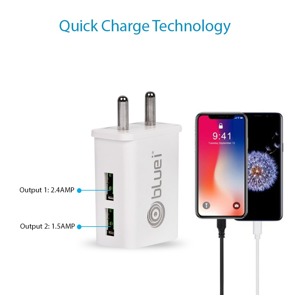 TA-02 Basic 2.4 Amp Mobile Charger with 2 USB Port