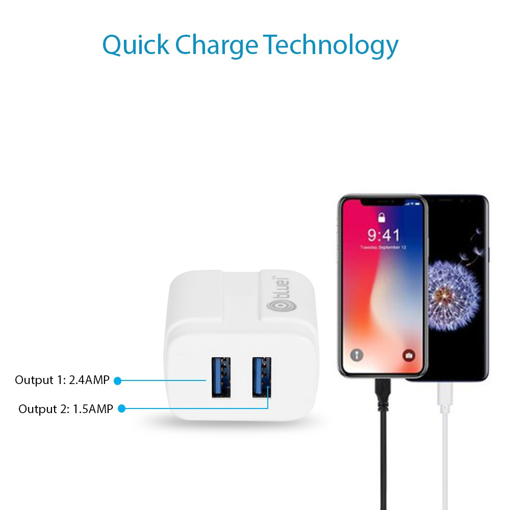 TA-02 Energy 2.4 Amp Mobile Charger with 2 USB Port