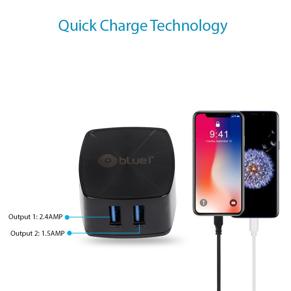 TA-02 Turbo 2.4 Amp Mobile Charger with 2 USB Port